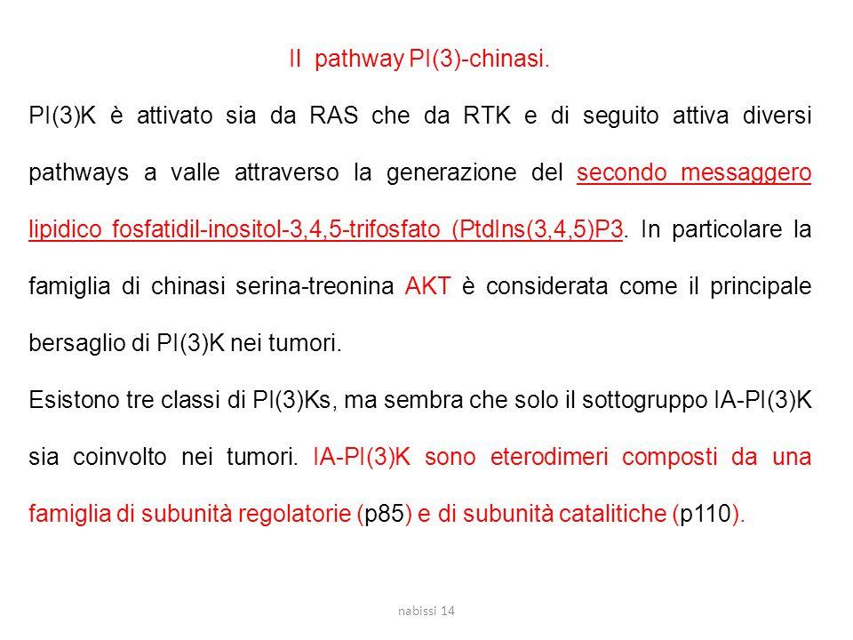 Il pathway PI(3)-chinasi.