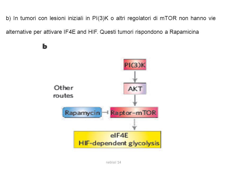 b) In tumori con lesioni iniziali in PI(3)K o altri regolatori di mTOR non hanno vie alternative per attivare IF4E and HIF.