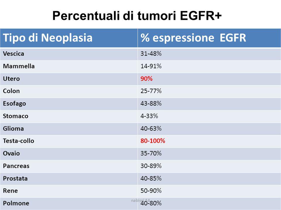 Tipo di Neoplasia% espressione EGFR Vescica31-48% Mammella14-91% Utero90% Colon25-77% Esofago43-88% Stomaco4-33% Glioma40-63% Testa-collo80-100% Ovaio35-70% Pancreas30-89% Prostata40-85% Rene50-90% Polmone40-80% Percentuali di tumori EGFR+ nabissi 14