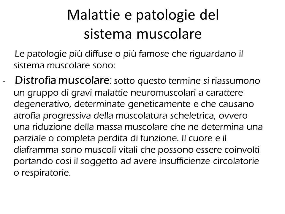 Malattie e patologie del sistema muscolare Le patologie più diffuse o più famose che riguardano il sistema muscolare sono: - Distrofia muscolare: sott
