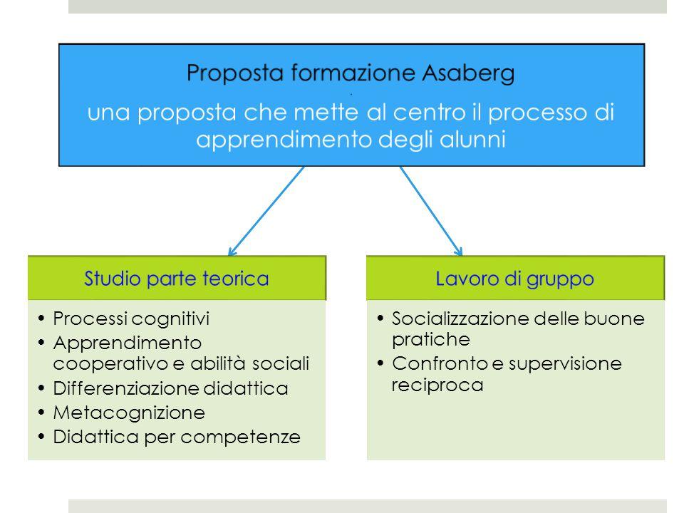 Studio parte teorica Processi cognitivi Apprendimento cooperativo e abilità sociali Differenziazione didattica Metacognizione Didattica per competenze