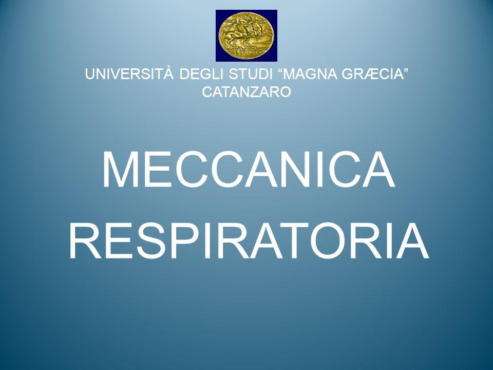 MECCANICA La meccanica è quella branca della fisica che studia il movimento dei corpi MECCANICA VENTILATORIA studia i movimenti del sistema toracopolmonare