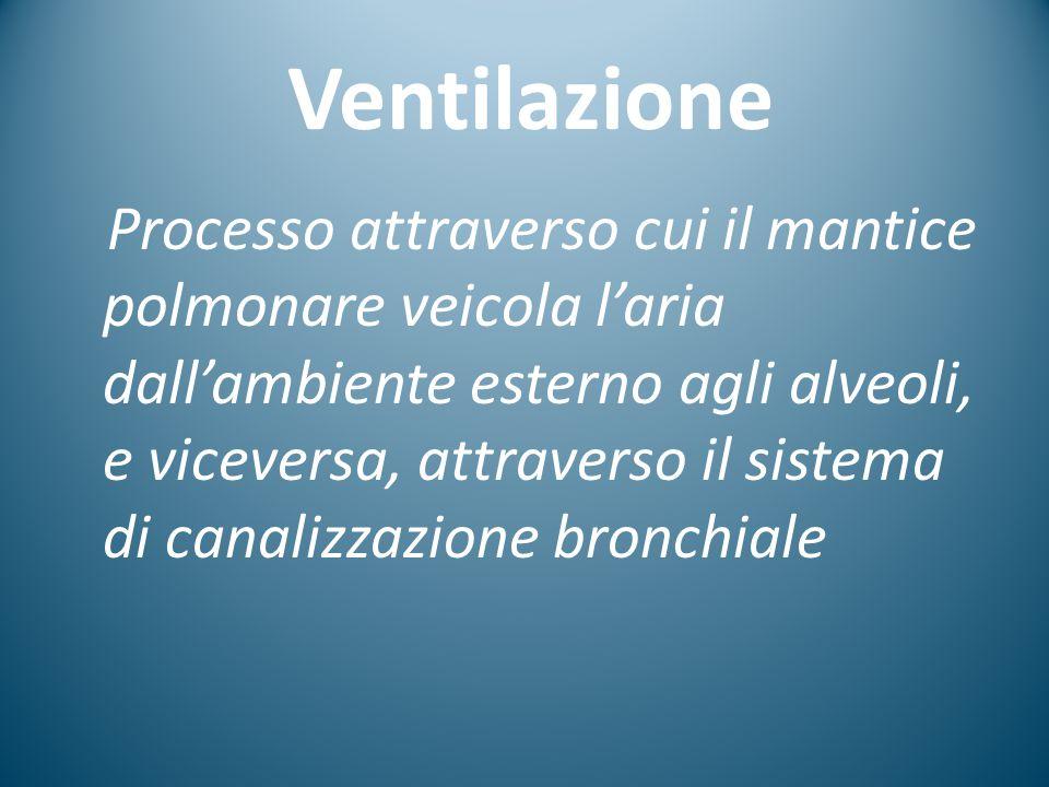 Ventilazione Processo attraverso cui il mantice polmonare veicola l'aria dall'ambiente esterno agli alveoli, e viceversa, attraverso il sistema di can