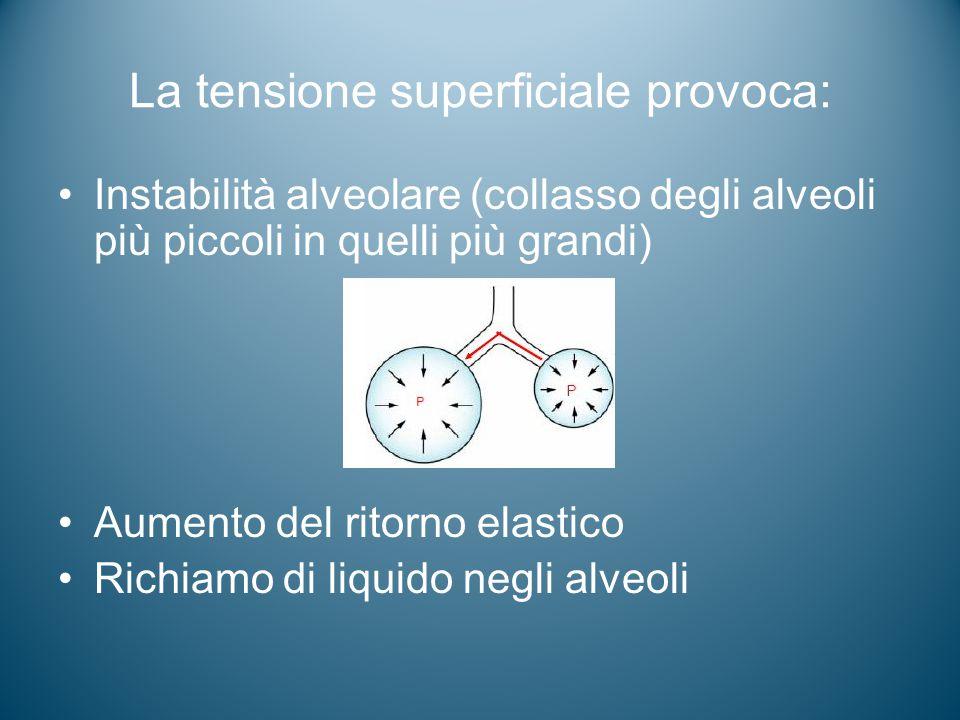 La tensione superficiale provoca: Instabilità alveolare (collasso degli alveoli più piccoli in quelli più grandi) Aumento del ritorno elastico Richiam