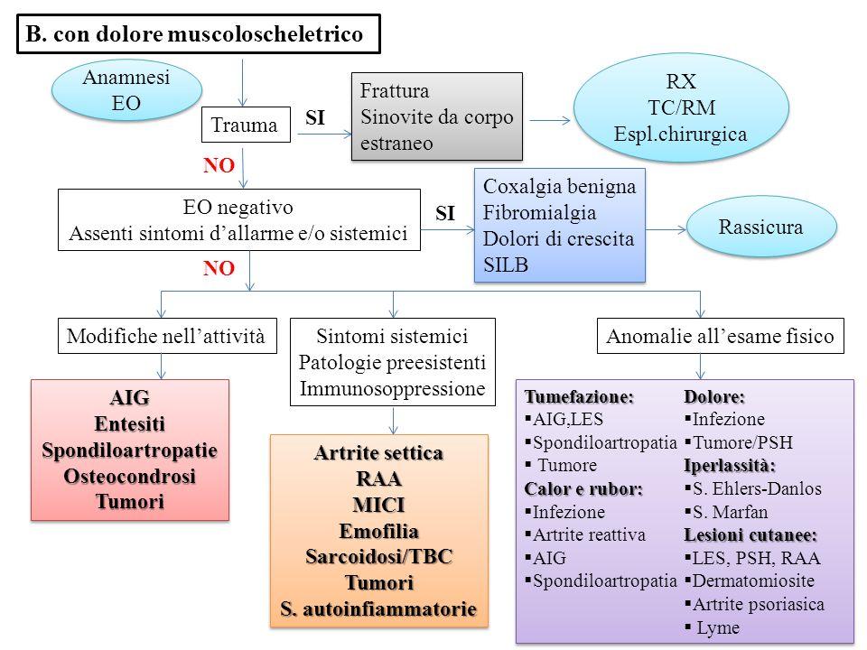 B. con dolore muscoloscheletrico Trauma RX TC/RM Espl.chirurgica RX TC/RM Espl.chirurgica NO EO negativo Assenti sintomi d'allarme e/o sistemici SI Ra