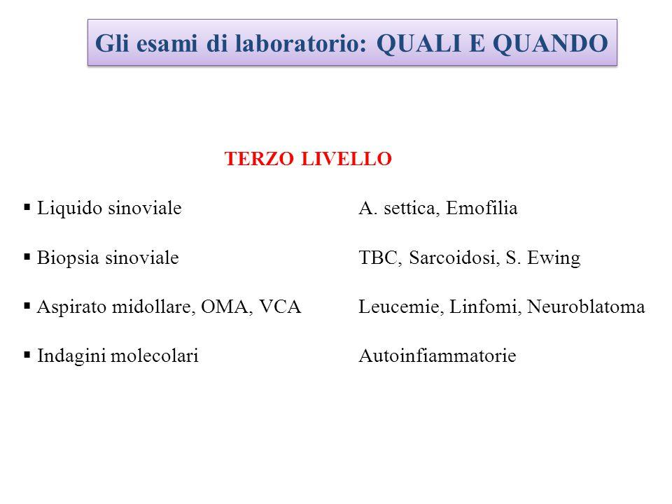 TERZO LIVELLO  Liquido sinovialeA.settica, Emofilia  Biopsia sinovialeTBC, Sarcoidosi, S.