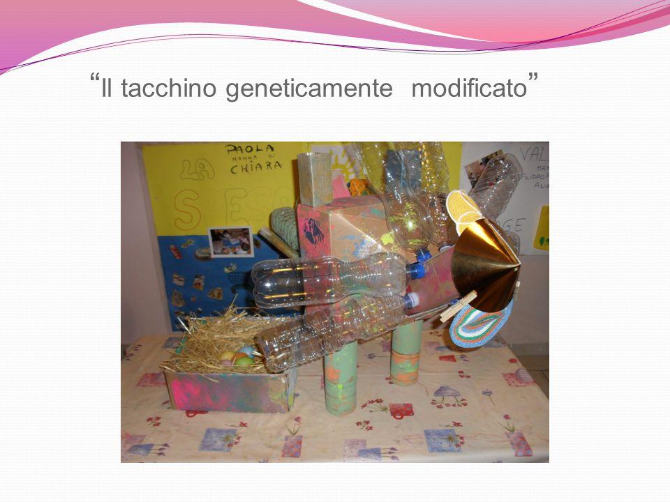 """"""" Il tacchino geneticamente modificato """""""