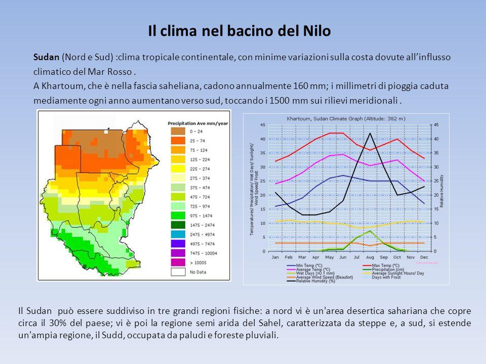 Il clima nel bacino del Nilo Sudan (Nord e Sud) :clima tropicale continentale, con minime variazioni sulla costa dovute all'influsso climatico del Mar Rosso.