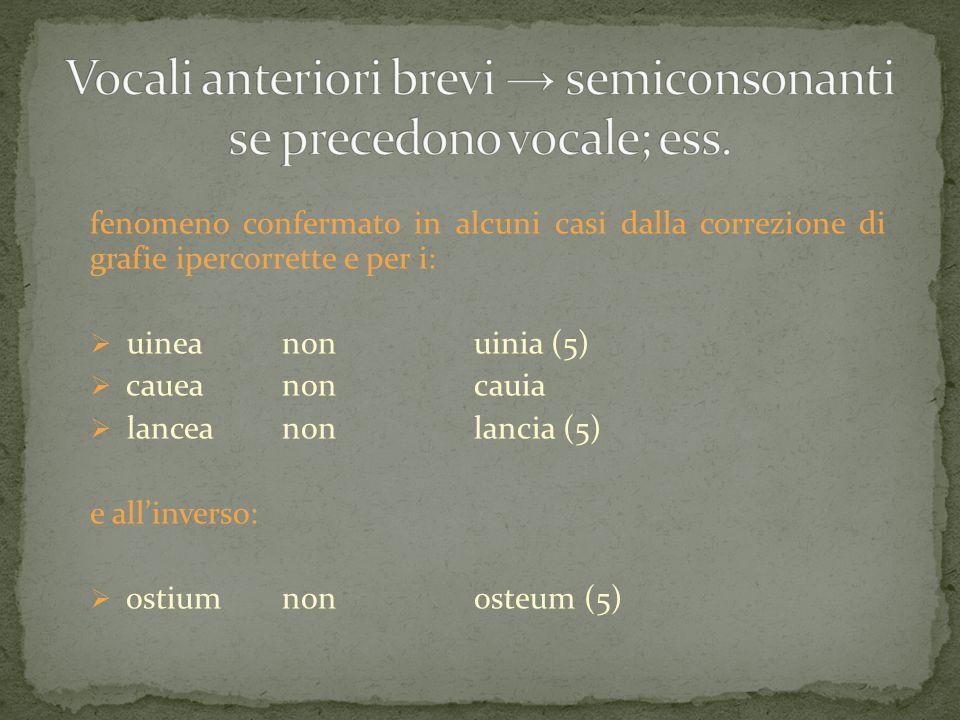 fenomeno confermato in alcuni casi dalla correzione di grafie ipercorrette e per i:  uineanonuinia (5)  caueanoncauia  lanceanonlancia (5) e all'in