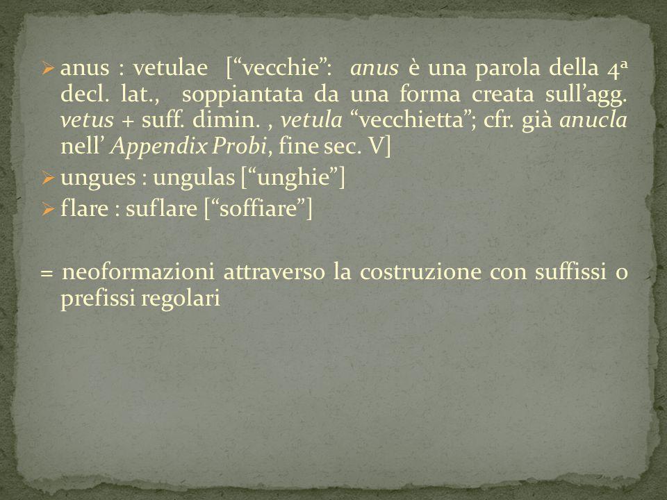 """ anus : vetulae [""""vecchie"""": anus è una parola della 4 a decl. lat., soppiantata da una forma creata sull'agg. vetus + suff. dimin., vetula """"vecchiett"""