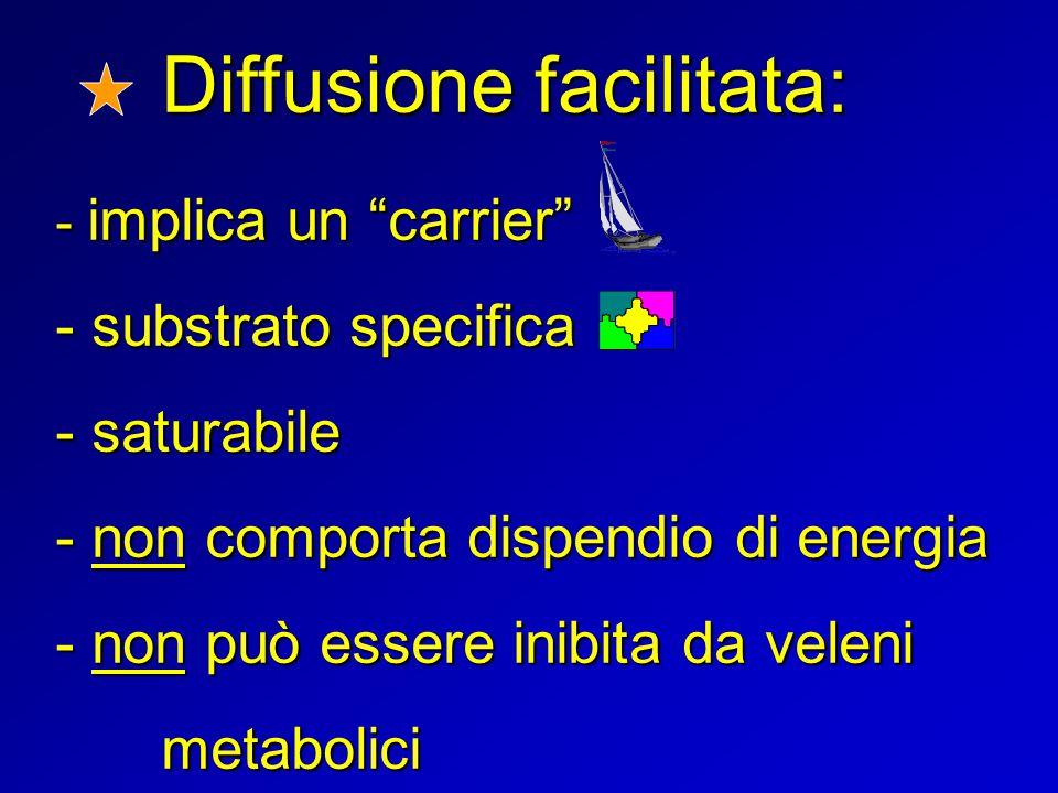 """Diffusione facilitata: - implica un """"carrier"""" - substrato specifica - saturabile - non comporta dispendio di energia - non può essere inibita da velen"""