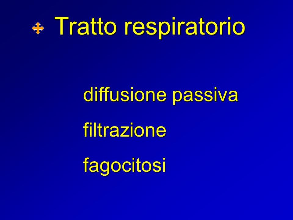 Tratto respiratorio diffusione passiva filtrazionefagocitosi