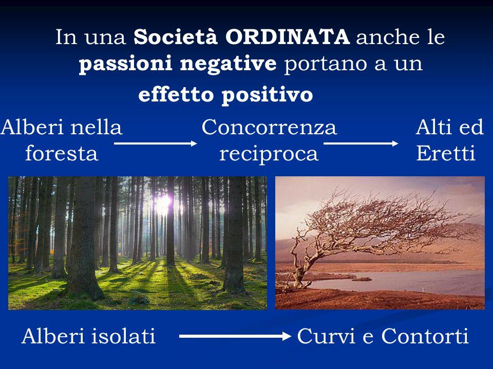 In una Società ORDINATA anche le passioni negative portano a un effetto positivo Alberi nella foresta Concorrenza reciproca Alti ed Eretti Alberi isol