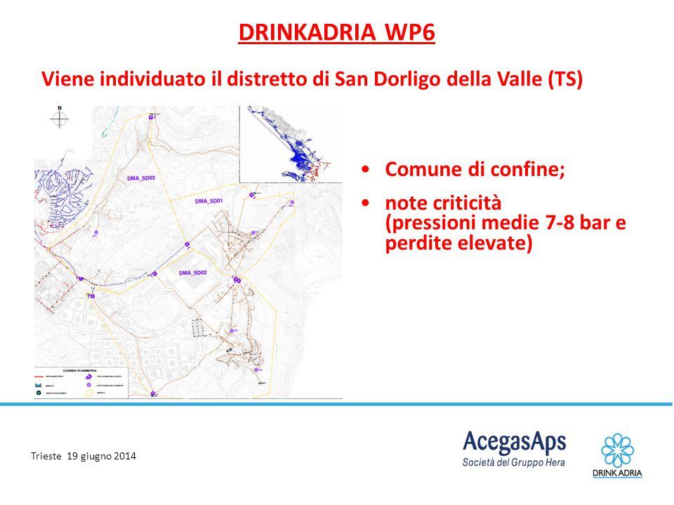 Trieste 19 giugno 2014 DRINKADRIA WP6 Viene individuato il distretto di San Dorligo della Valle (TS) Comune di confine; note criticità (pressioni medi