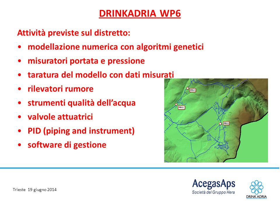 Trieste 19 giugno 2014 DRINKADRIA WP6 Attività previste sul distretto: modellazione numerica con algoritmi genetici misuratori portata e pressione tar