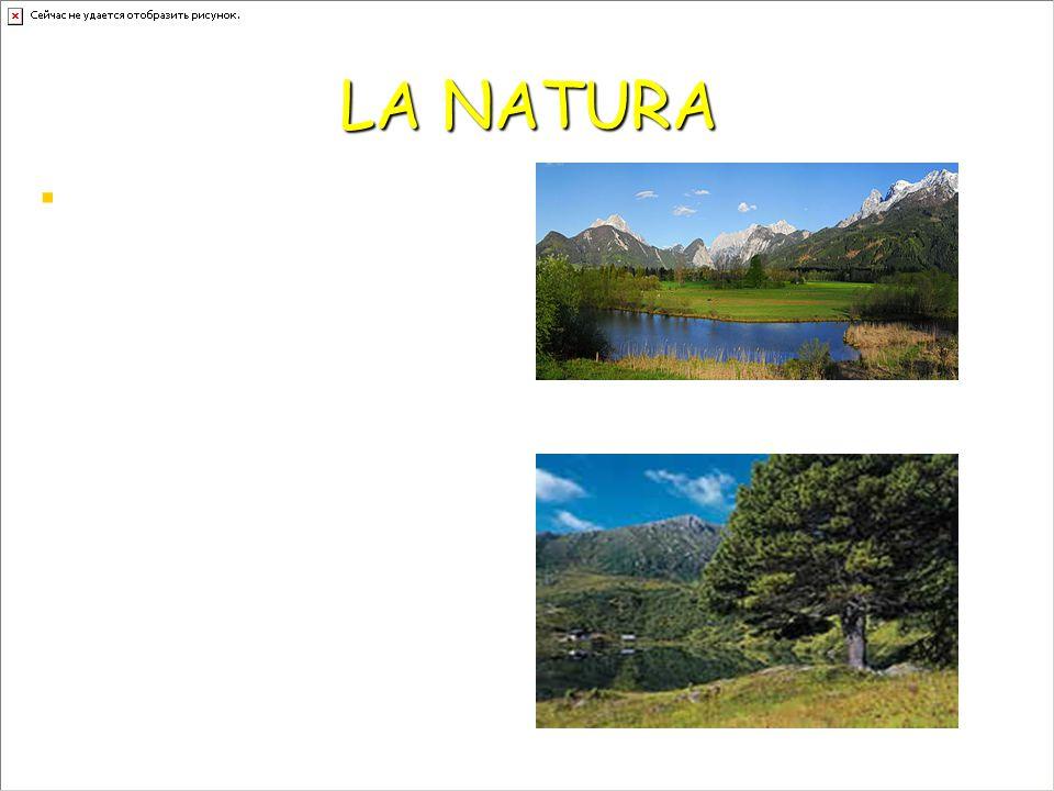 LA NATURA IIl parco nazionale Gesause È il terzo più grande D'Austria Il Nocken in Carinzia è un paesaggio montano compreso fra i 1300 e i 2440 me