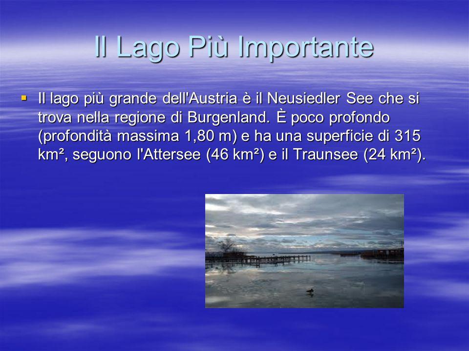 Il Lago Più Importante  Il lago più grande dell'Austria è il Neusiedler See che si trova nella regione di Burgenland. È poco profondo (profondità mas