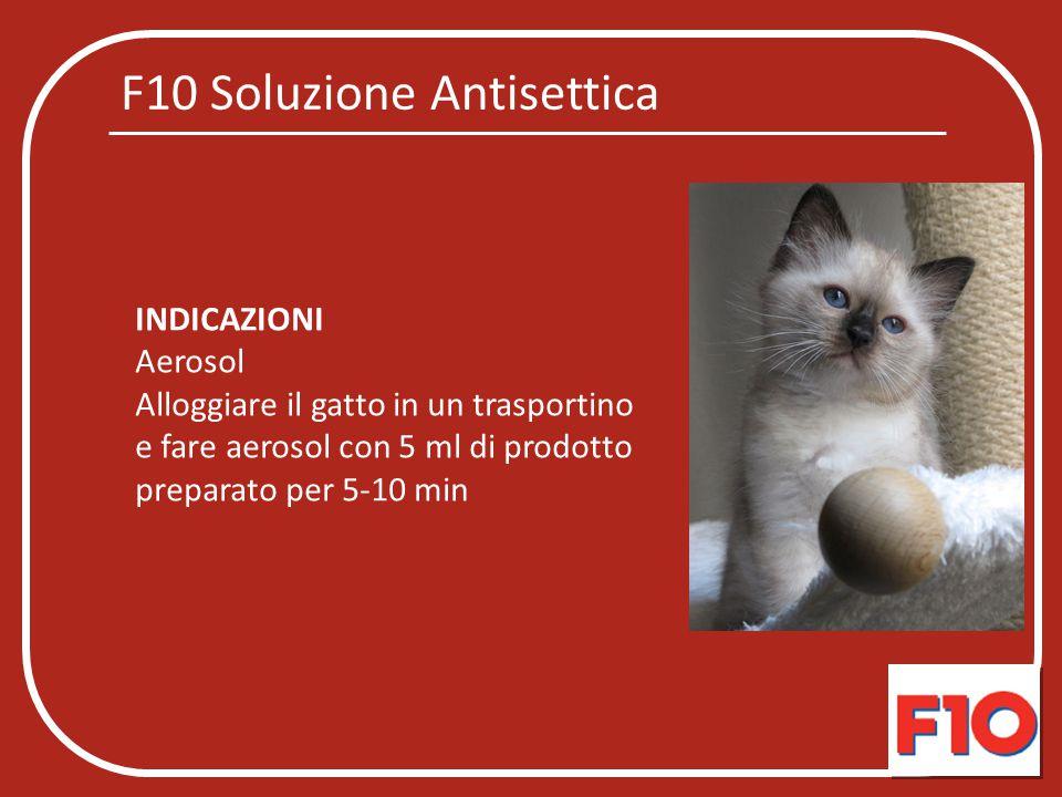 F10 Soluzione Antisettica INDICAZIONI Aerosol Alloggiare il gatto in un trasportino e fare aerosol con 5 ml di prodotto preparato per 5-10 min