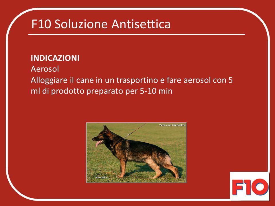 F10 Soluzione Antisettica INDICAZIONI Aerosol Alloggiare il cane in un trasportino e fare aerosol con 5 ml di prodotto preparato per 5-10 min