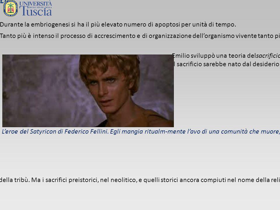 EMILIO: L'ULTIMO SODALIZIO L'ultimo sodalizio di Emilio è quello con Luc Montagnier.