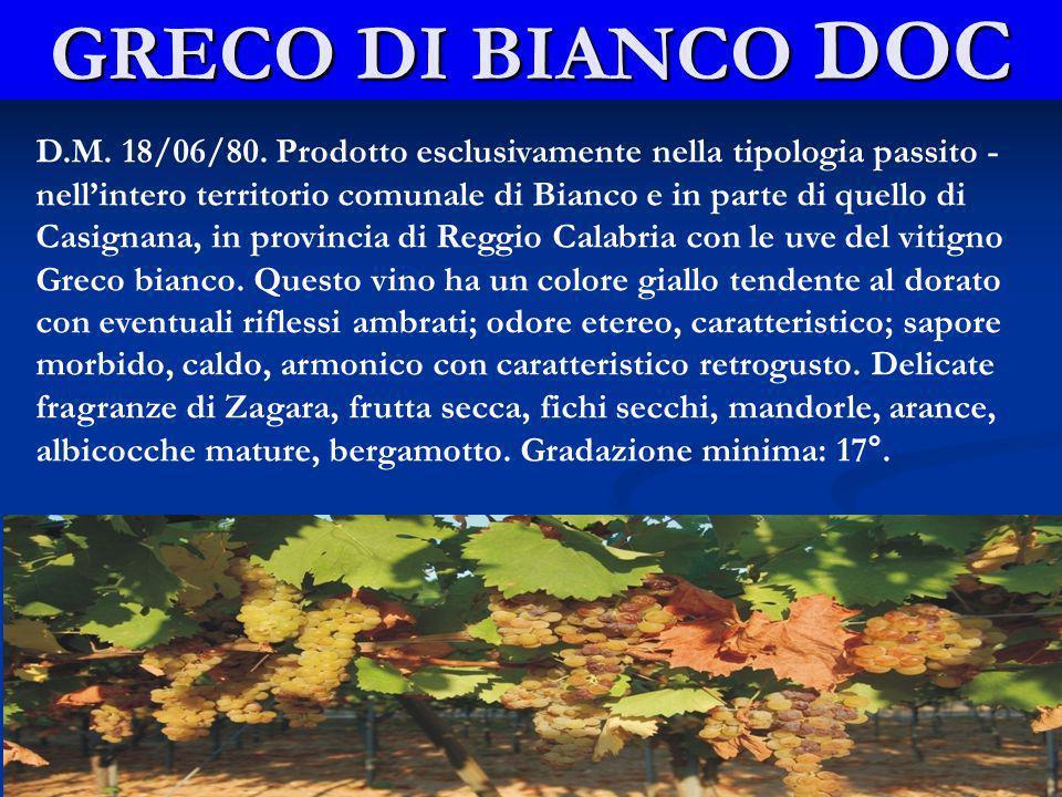 GRECO DI BIANCO DOC D.M.18/06/80.