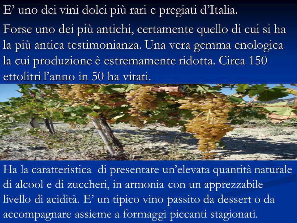 E' uno dei vini dolci più rari e pregiati d'Italia.