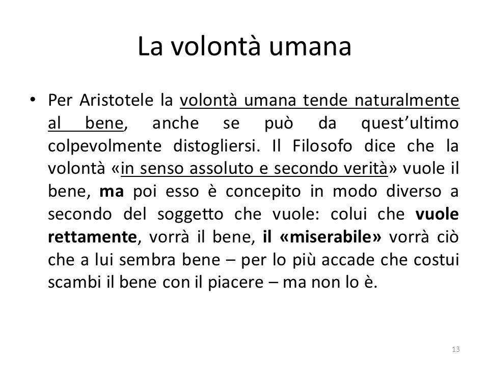 13 La volontà umana Per Aristotele la volontà umana tende naturalmente al bene, anche se può da quest'ultimo colpevolmente distogliersi.