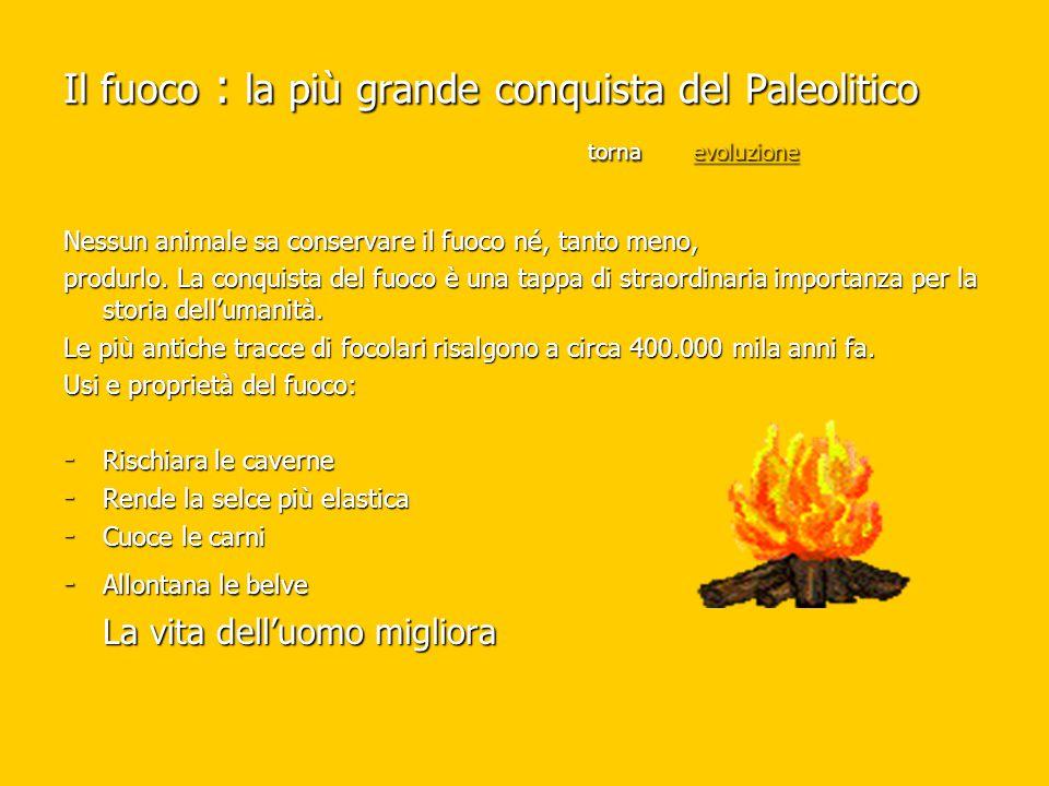 Il fuoco : la più grande conquista del Paleolitico torna evoluzione evoluzione Nessun animale sa conservare il fuoco né, tanto meno, produrlo. La conq
