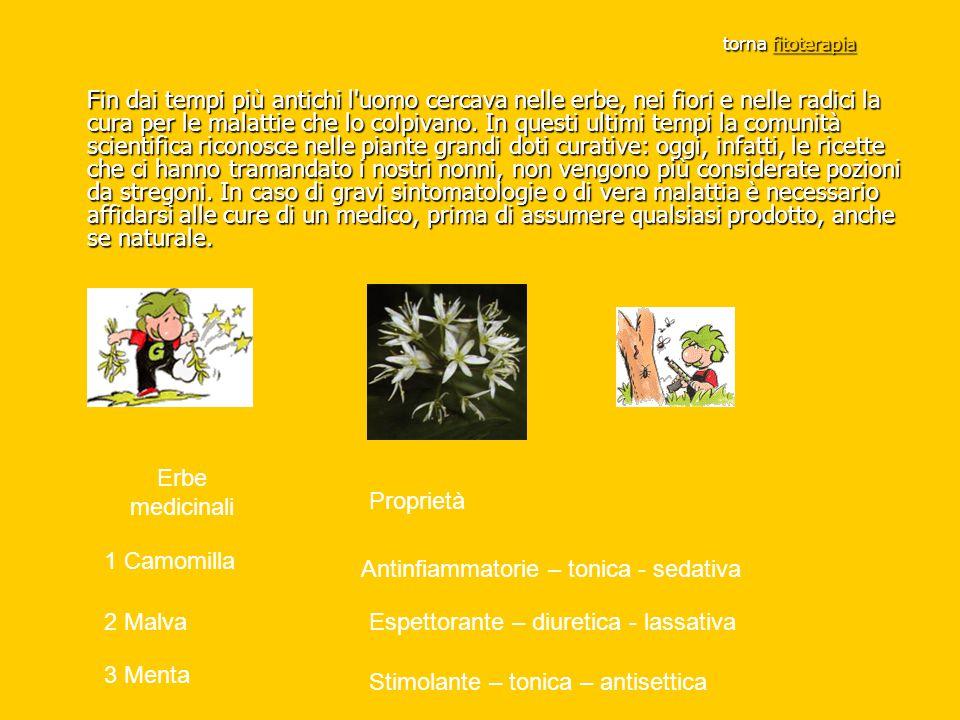 torna fitoterapia torna fitoterapiafitoterapia Fin dai tempi più antichi l'uomo cercava nelle erbe, nei fiori e nelle radici la cura per le malattie c