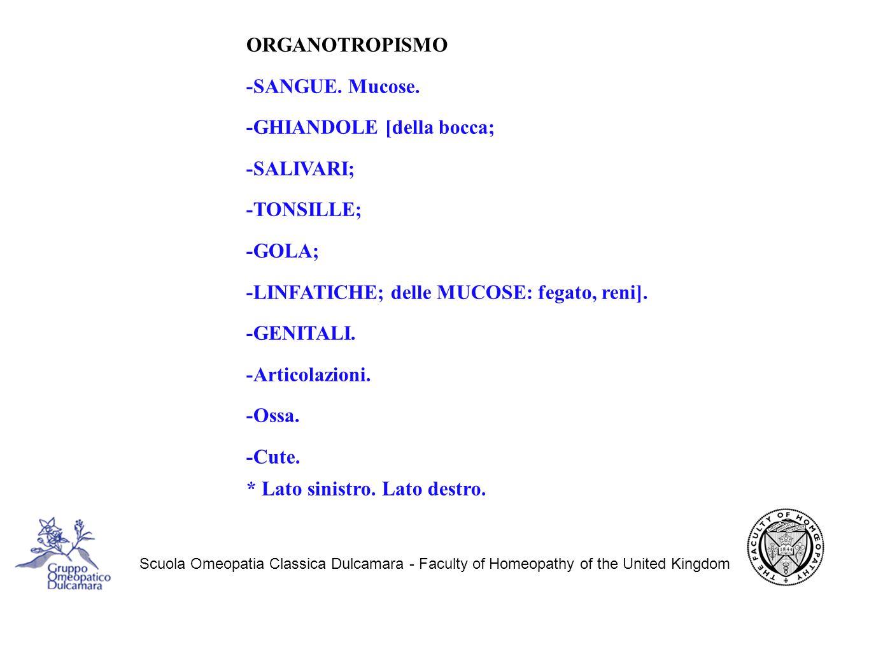 Scuola Omeopatia Classica Dulcamara - Faculty of Homeopathy of the United Kingdom ORGANOTROPISMO -SANGUE.