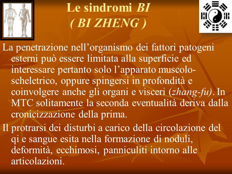 Le sindromi BI ( BI ZHENG ) La penetrazione nell'organismo dei fattori patogeni esterni può essere limitata alla superficie ed interessare pertanto so