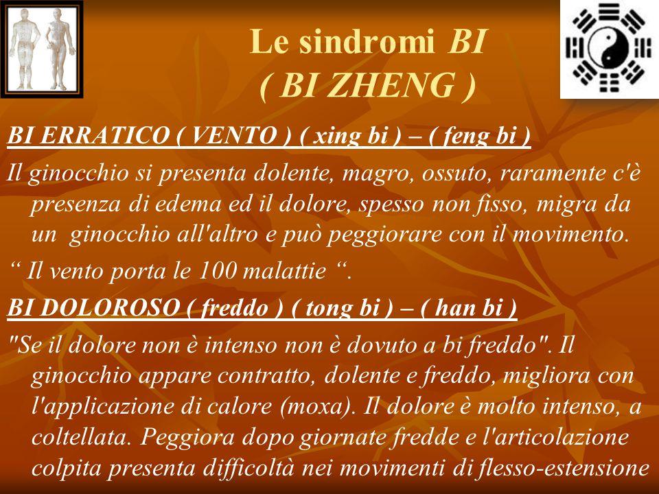 Le sindromi BI ( BI ZHENG ) BI ERRATICO ( VENTO ) ( xing bi ) – ( feng bi ) Il ginocchio si presenta dolente, magro, ossuto, raramente c'è presenza di