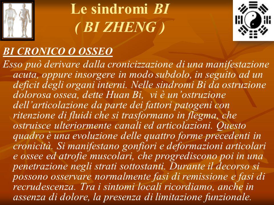 Le sindromi BI ( BI ZHENG ) BI CRONICO O OSSEO Esso può derivare dalla cronicizzazione di una manifestazione acuta, oppure insorgere in modo subdolo,