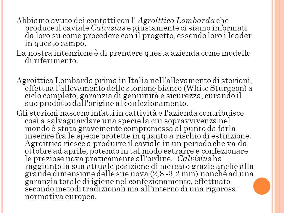 LA CONCORRENZA 2.2 LA CONCORRENZA I concorrenti già operativi nel nostro settore sono abbastanza numerosi in Veneto, Lombardia ed Emilia-Romagna, ma i