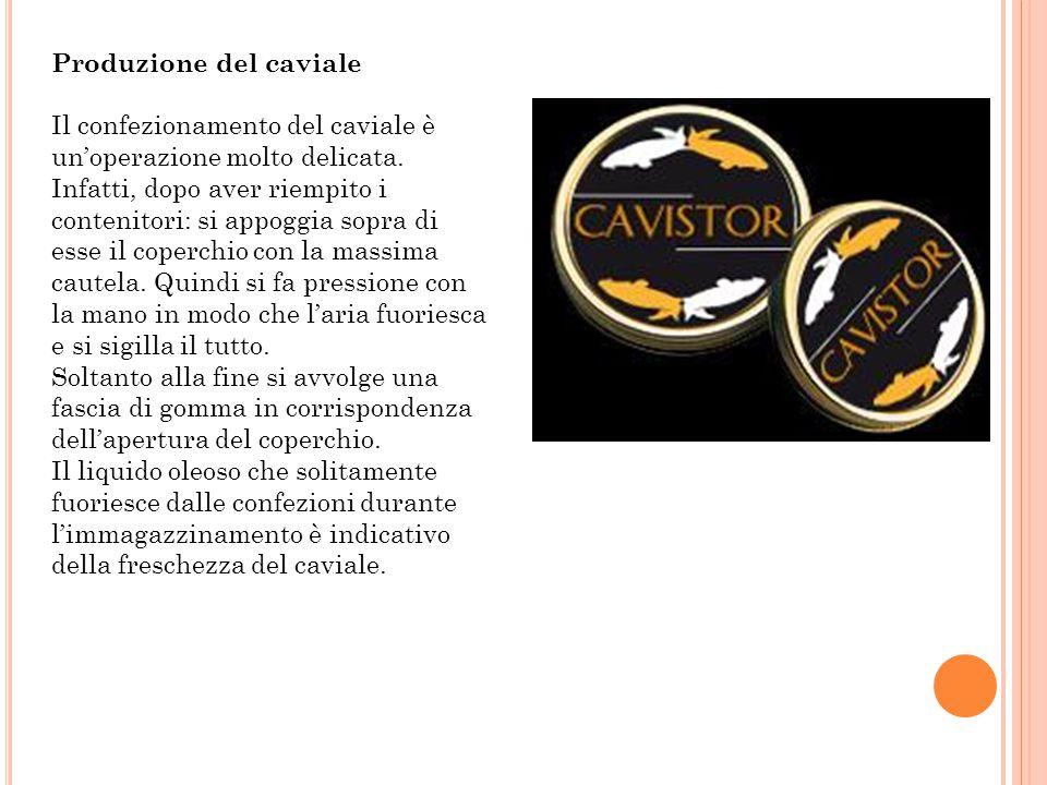 Produzione dello storione affumicato Ingredienti Storione - Sale Fasi del processo Eviscerazione Decapitazione Asportazione di pinne e squame Lavaggio