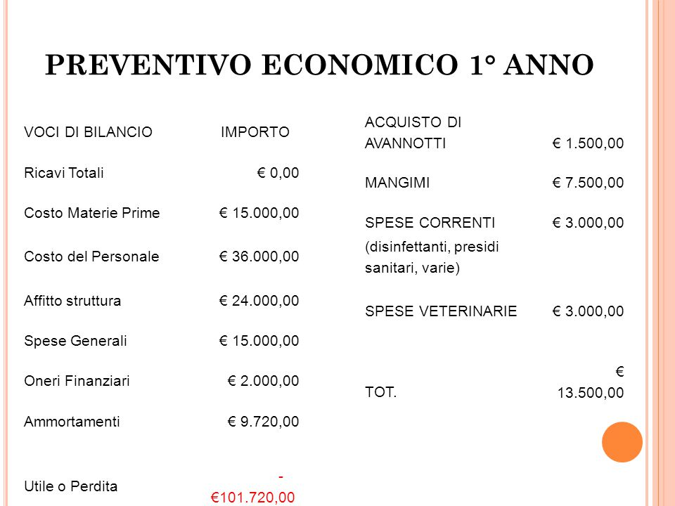 7.3 I principali costi annuali dell'impresa. Abbiamo deciso durante il corso dei primi 2 anni di stipendiarci con la modesta somma di 500,00 euro mens