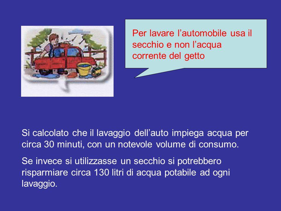 Per lavare l'automobile usa il secchio e non l'acqua corrente del getto Si calcolato che il lavaggio dell'auto impiega acqua per circa 30 minuti, con un notevole volume di consumo.