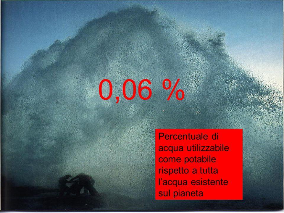 0,06 % Percentuale di acqua utilizzabile come potabile rispetto a tutta l'acqua esistente sul pianeta