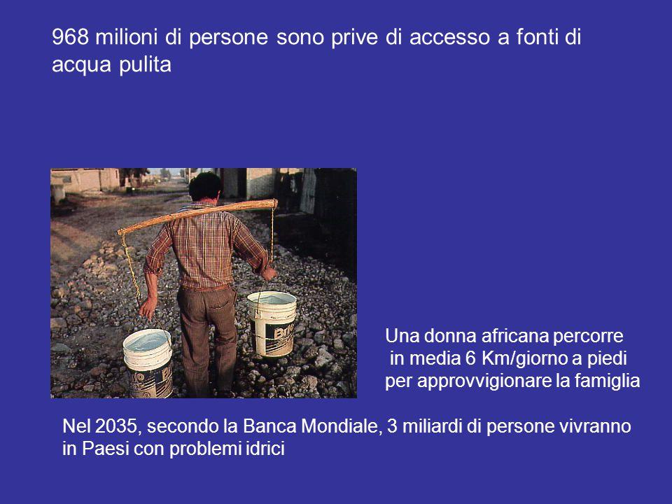 968 milioni di persone sono prive di accesso a fonti di acqua pulita Nel 2035, secondo la Banca Mondiale, 3 miliardi di persone vivranno in Paesi con problemi idrici Una donna africana percorre in media 6 Km/giorno a piedi per approvvigionare la famiglia