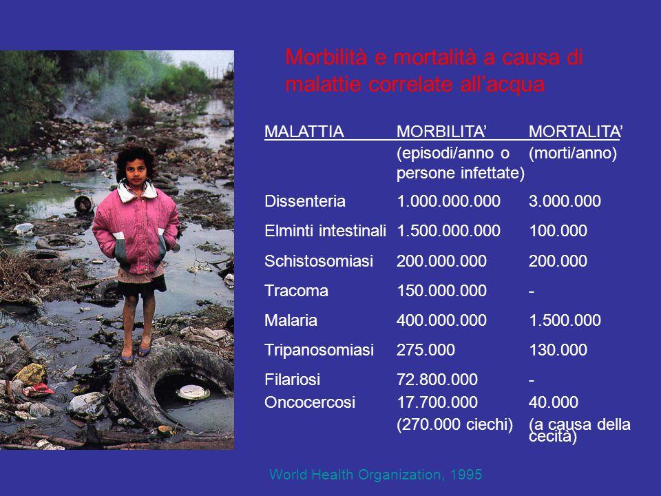 Morbilità e mortalità a causa di malattie correlate all'acqua MALATTIAMORBILITA'MORTALITA' (episodi/anno o(morti/anno) persone infettate) Dissenteria1.000.000.0003.000.000 Elminti intestinali1.500.000.000100.000 Schistosomiasi200.000.000200.000 Tracoma150.000.000- Malaria400.000.0001.500.000 Tripanosomiasi275.000130.000 Filariosi 72.800.000- Oncocercosi17.700.00040.000 (270.000 ciechi)(a causa della cecità) World Health Organization, 1995