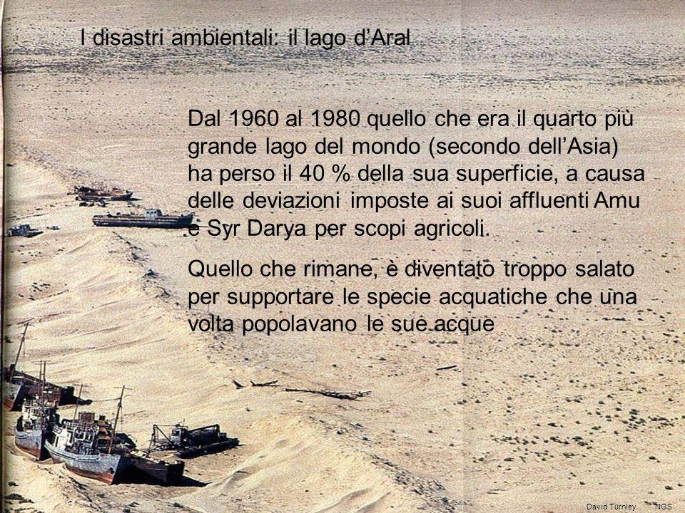 I disastri ambientali: il lago d'Aral Dal 1960 al 1980 quello che era il quarto più grande lago del mondo (secondo dell'Asia) ha perso il 40 % della sua superficie, a causa delle deviazioni imposte ai suoi affluenti Amu e Syr Darya per scopi agricoli.