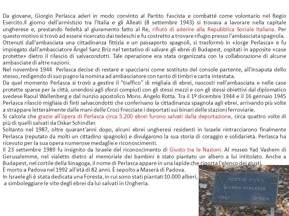 Da giovane, Giorgio Perlasca aderì in modo convinto al Partito Fascista e combatté come volontario nel Regio Esercito.Il giorno dell'armistizio tra l'