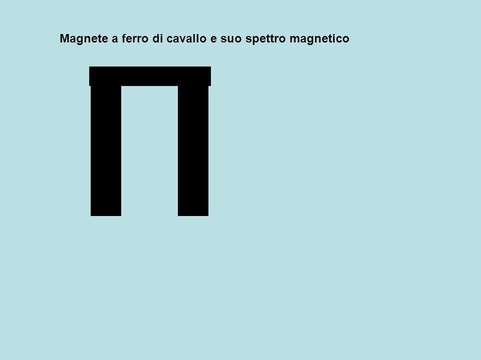 Magnete a ferro di cavallo e suo spettro magnetico