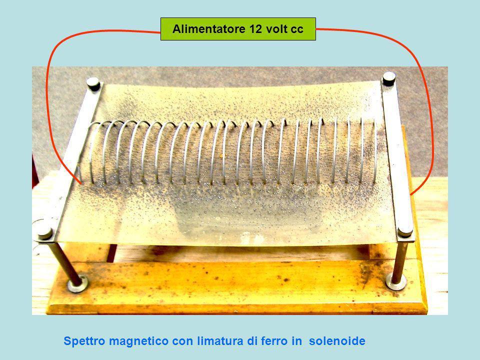 nordsud Magnete permanente lineare e suo spettro magnetico