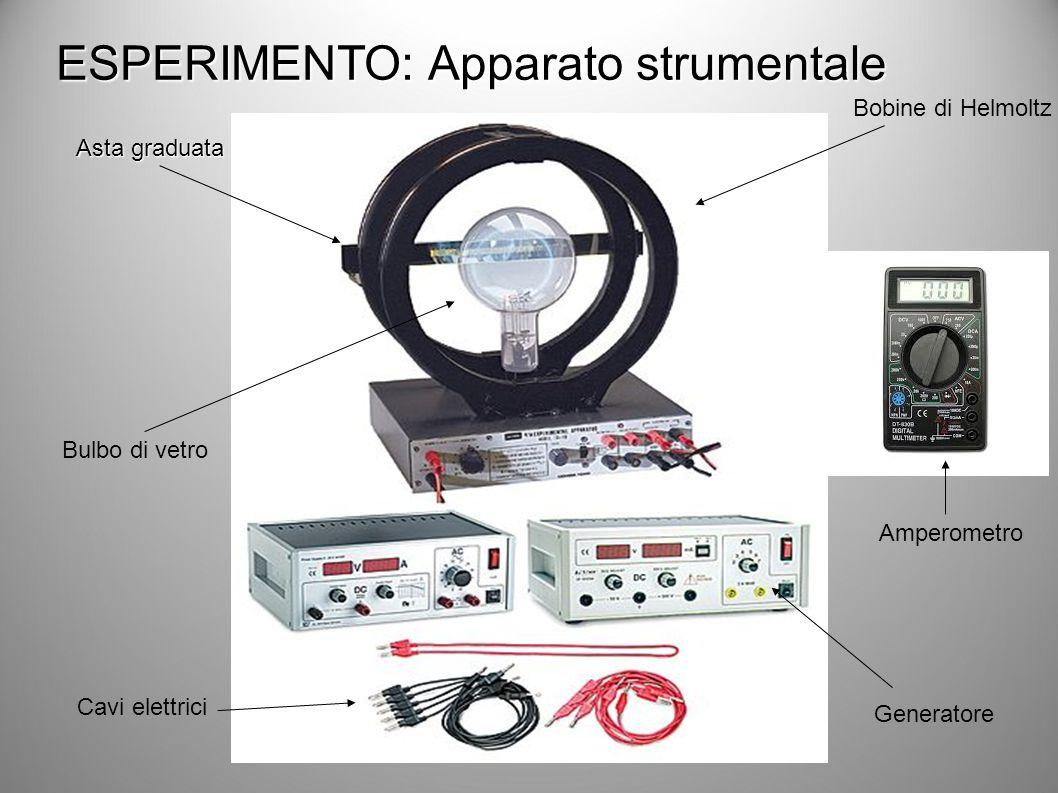 ESPERIMENTO: Apparato strumentale Cavi elettrici Amperometro Bobine di Helmoltz Bulbo di vetro Generatore Asta graduata