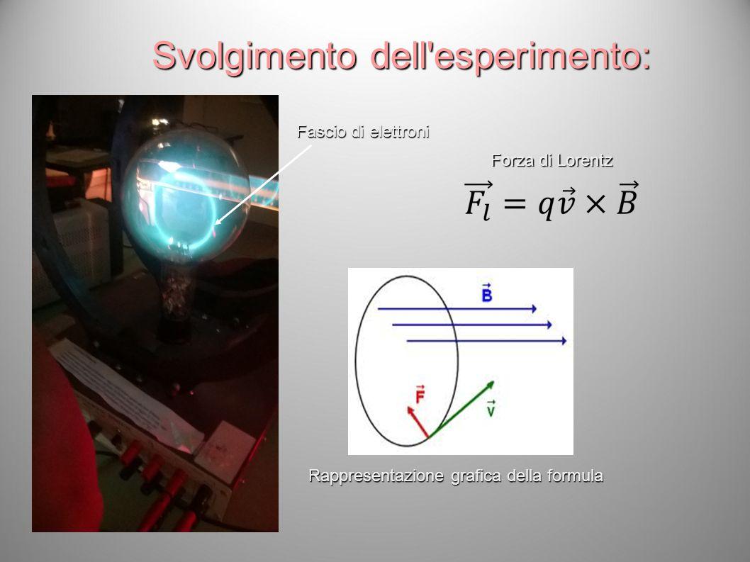 Fascio di elettroni Forza di Lorentz Svolgimento dell'esperimento: Rappresentazione grafica della formula