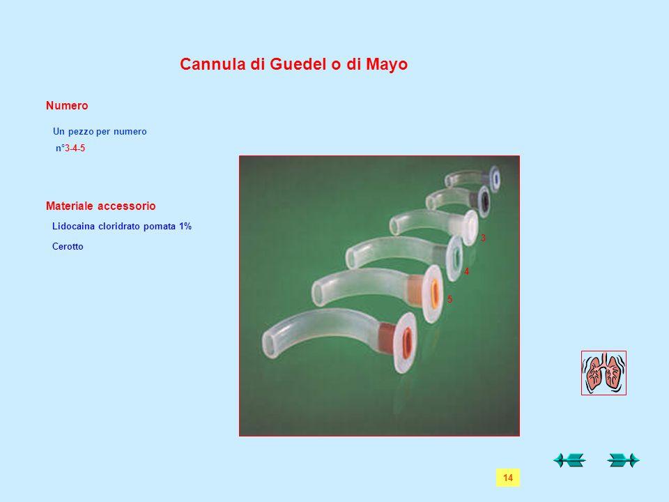 Cannula di Guedel o di Mayo Numero Materiale accessorio Lidocaina cloridrato pomata 1% Cerotto Un pezzo per numero n°3-4-5 5 4 3 14