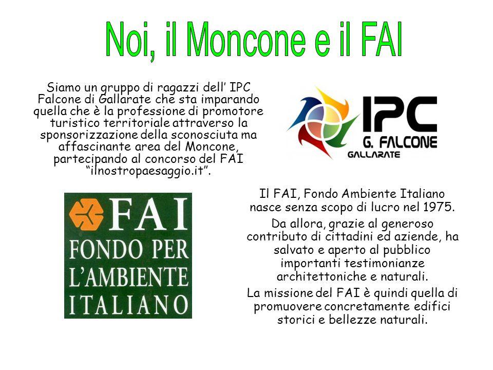 Il FAI, Fondo Ambiente Italiano nasce senza scopo di lucro nel 1975. Da allora, grazie al generoso contributo di cittadini ed aziende, ha salvato e ap
