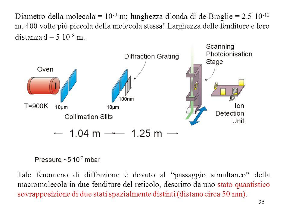 36 Diametro della molecola = 10 -9 m; lunghezza d'onda di de Broglie = 2.5 10 -12 m, 400 volte più piccola della molecola stessa! Larghezza delle fend