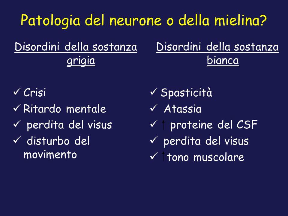 Patologia del neurone o della mielina? Disordini della sostanza grigia Crisi Ritardo mentale perdita del visus disturbo del movimento Disordini della